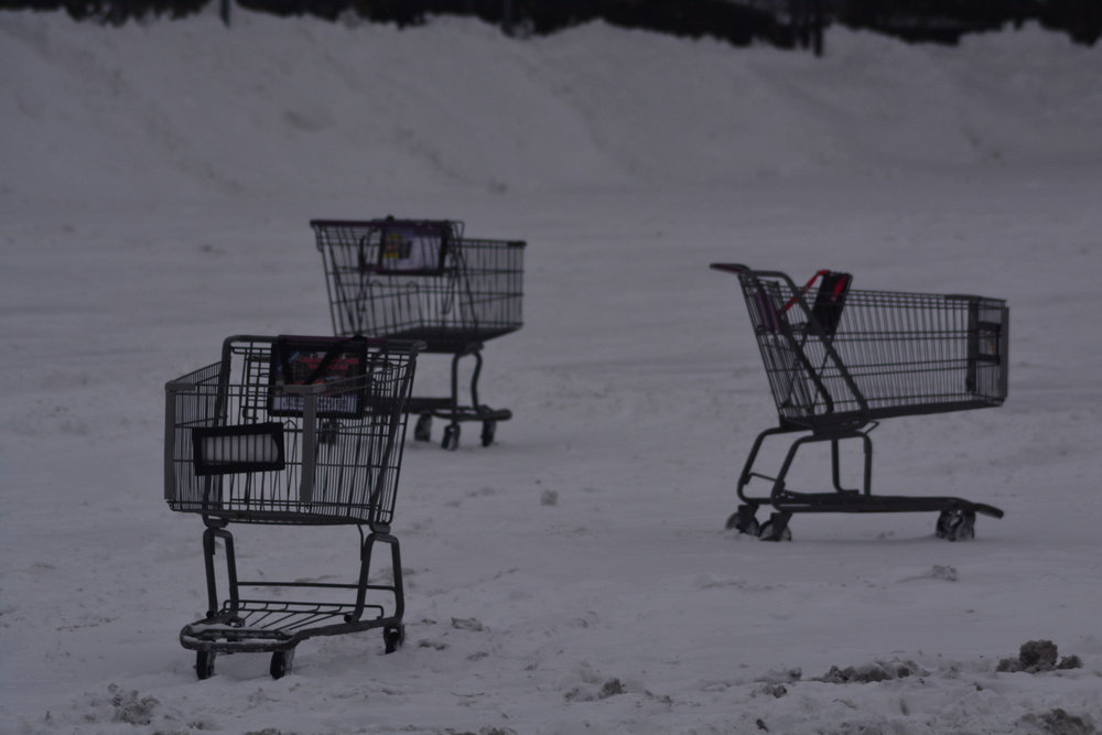 Herd of Wild Chopping Carts in the Stop & Shop Parking Lot