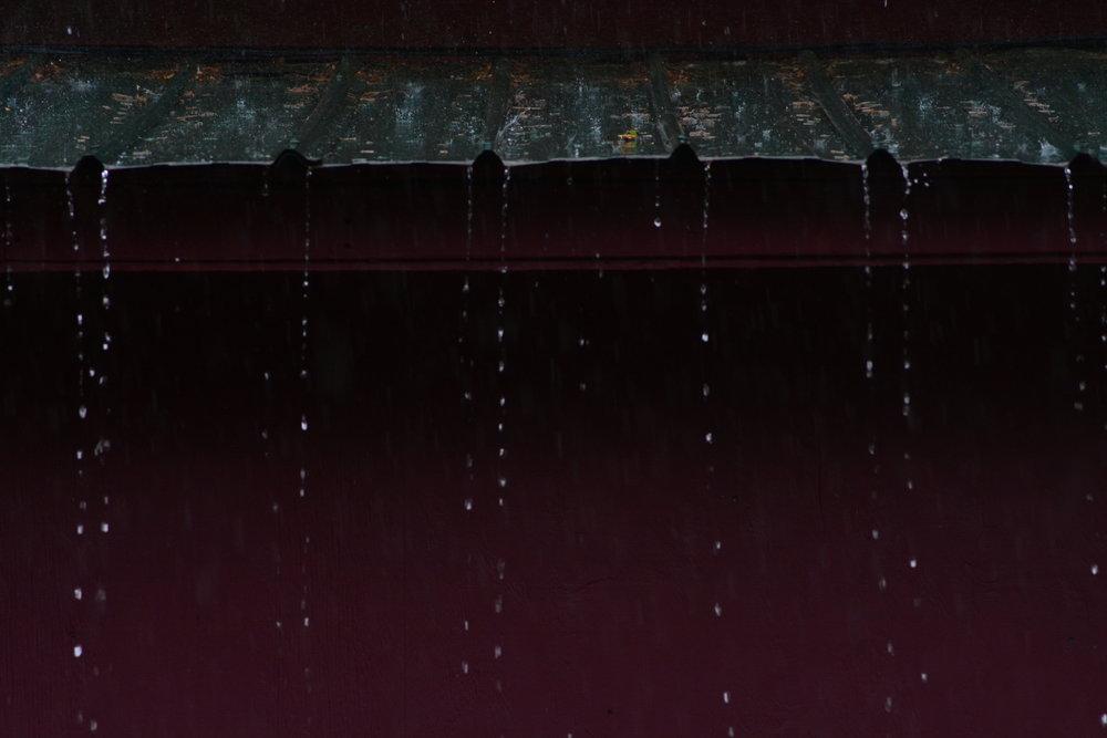 Summer Rain Storm 1