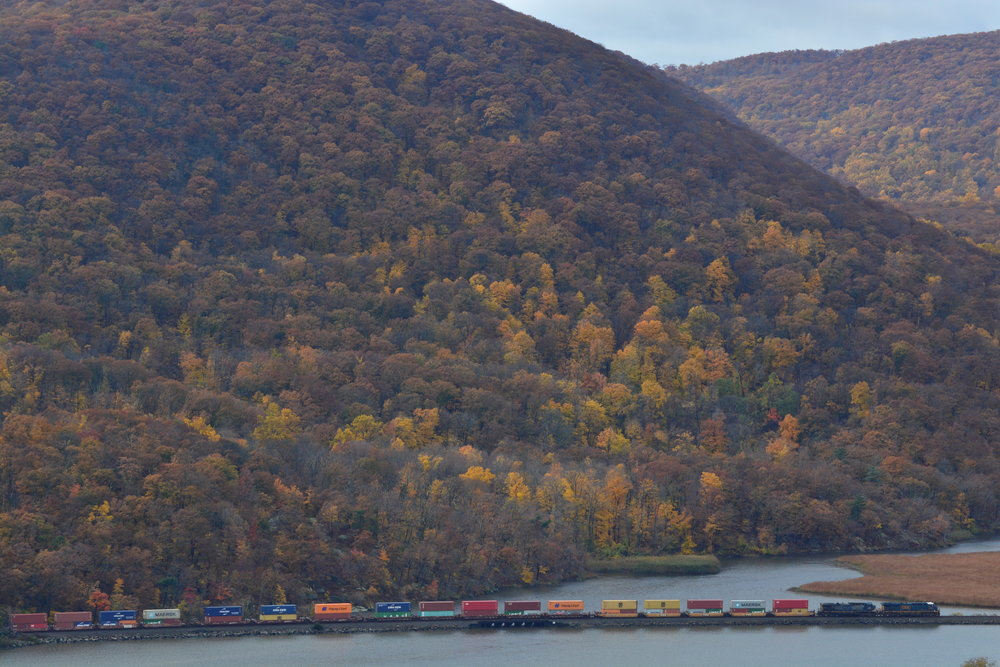 Fall Foliage // Freight Train