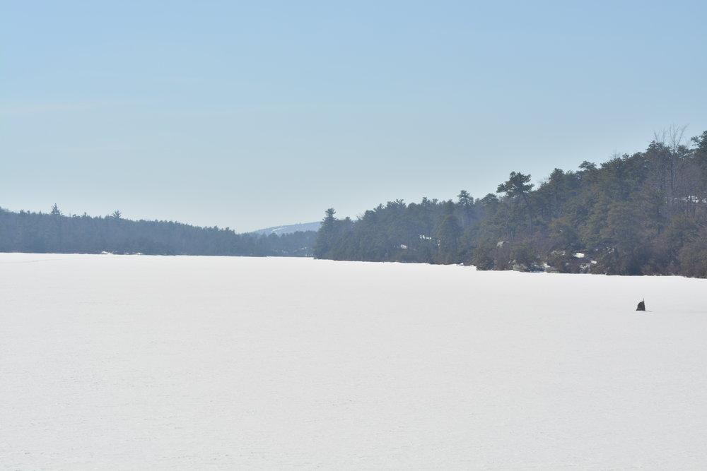 Frozen Lake Awosting