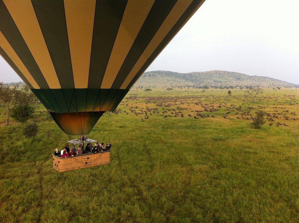 Origins Safaris - Nairobi, KenyaRequests:origins@navigo360.comoriginsafaris.com+254 20 2042695 / 6 / 7 / +254 724 253861Eastern +8 hours Standard / +7 hours DSTPacific +11 hours Standard / +10 hours DST