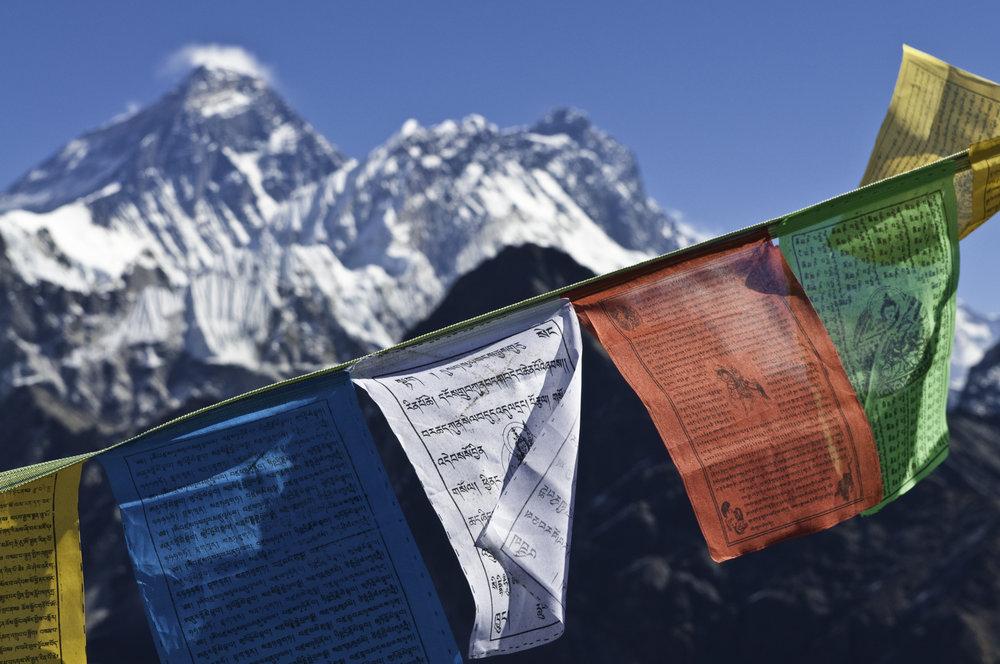 dharma adventures -