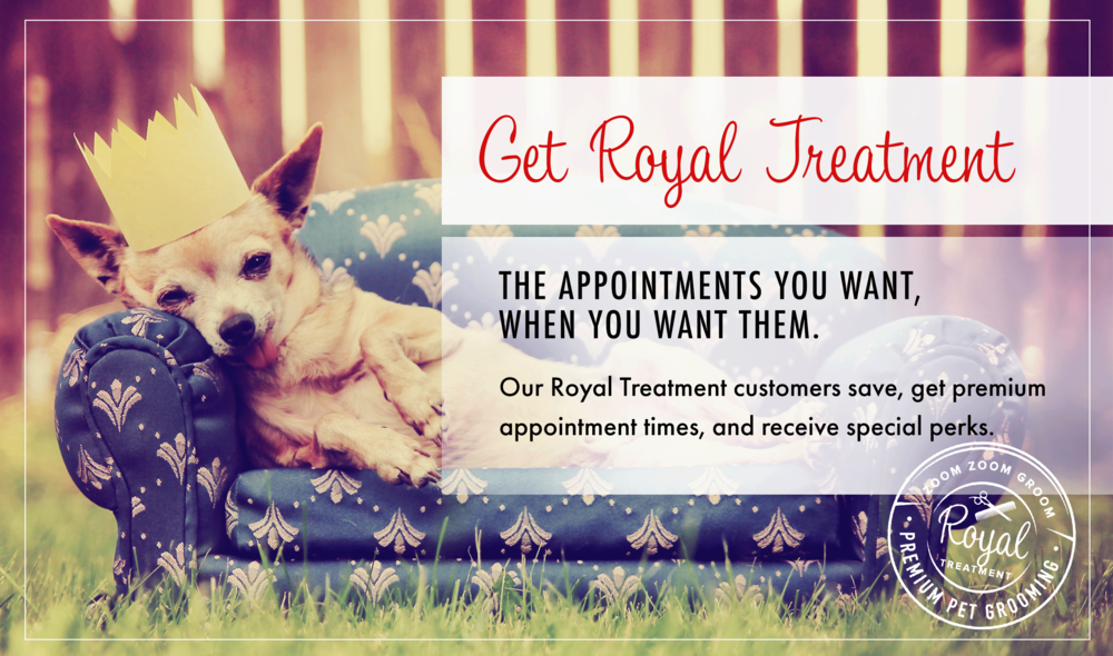 Royal treatment for your pet