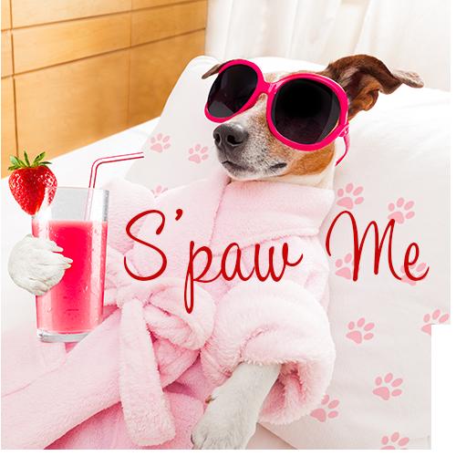 Dog Spa Regina