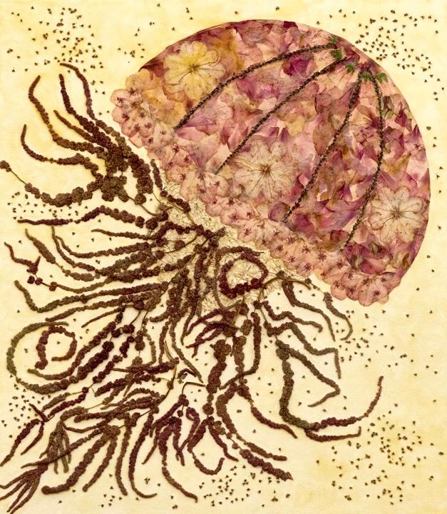 """Jellyfish"""