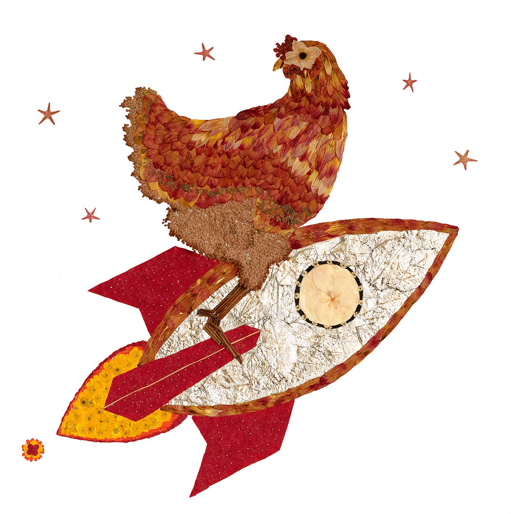 """""""Chicken On A Rocket; Don't Look Back!"""""""