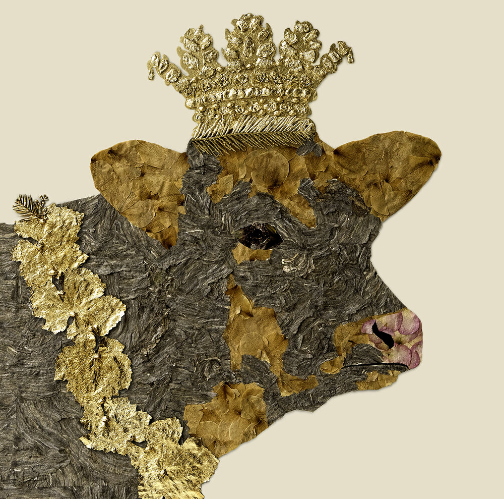 House of Royals / Clementine The Cow