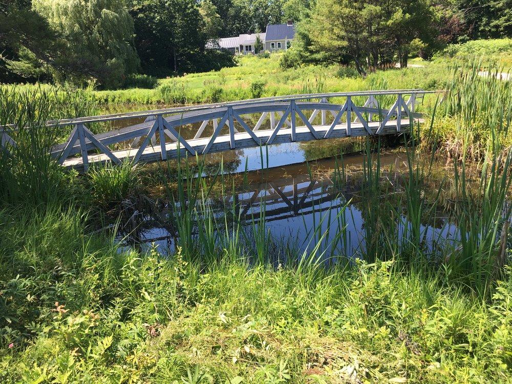 a random mini Monet bridge