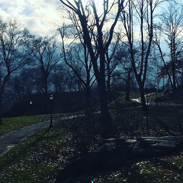 Winter tour of #centralpark #nyc #optoutside