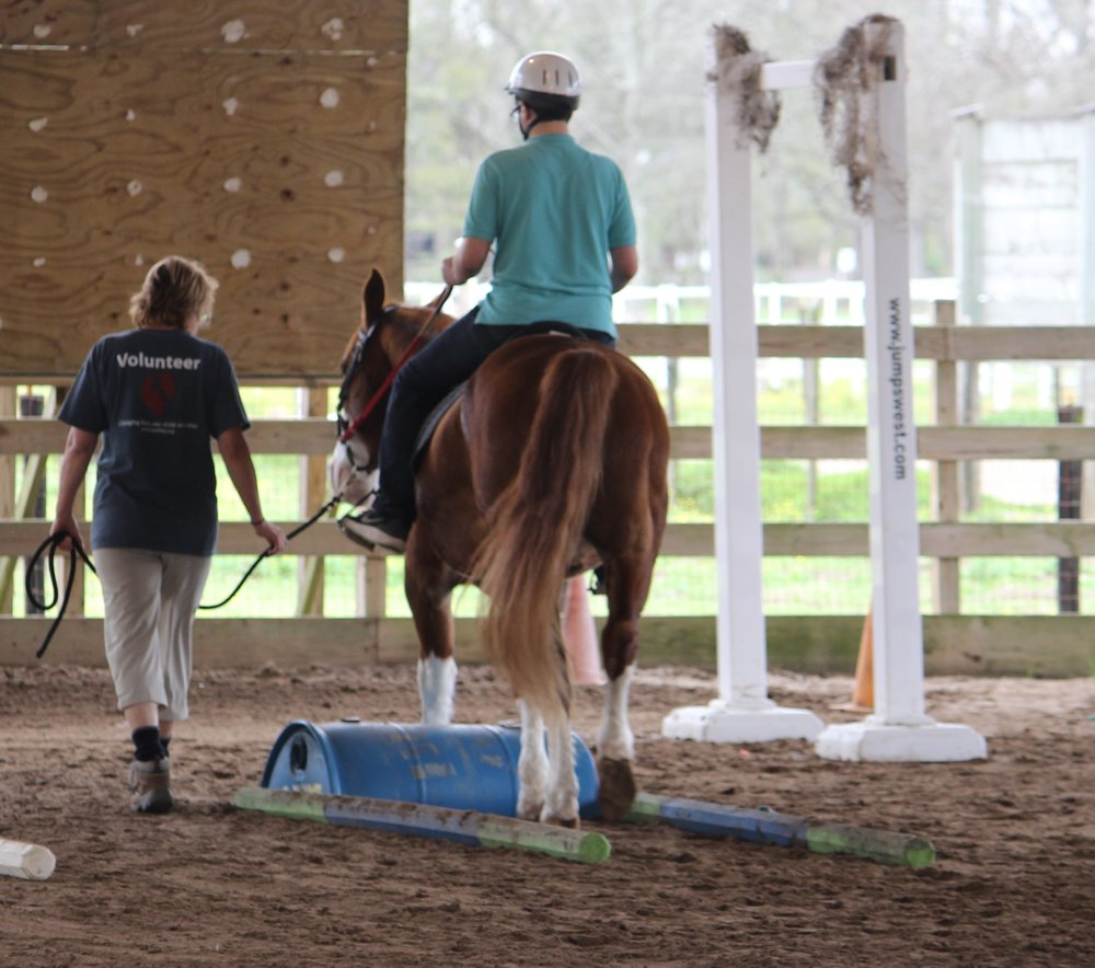 Scholarship Fund   GaitWay believes that everyone deserves the right to affordable healthcare the right to affordable human services. We offer equine therapy services to those with special needs throughout the community and try to accomodate everyone, regardless of their ability to pay, by granting scholarships.  This fund provides support for our riders who need financial assistance to cover their therapeutic riding fees. Currently, we have awarded all scholarship funds and have started a waiting list of potential participants waiting for funding.  Donating to this fund will directly impact our riders and fill a very important need.