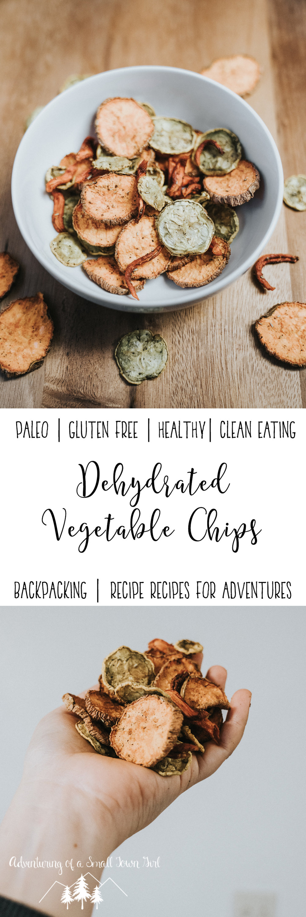 Dehydrated Vegetable Chips By Adventuring of a Small Town Girl (ASTG) - Backpacking Recipes - Recipes for Adventures - Dehydrated Recipes - Paleo Backpacking Recipes