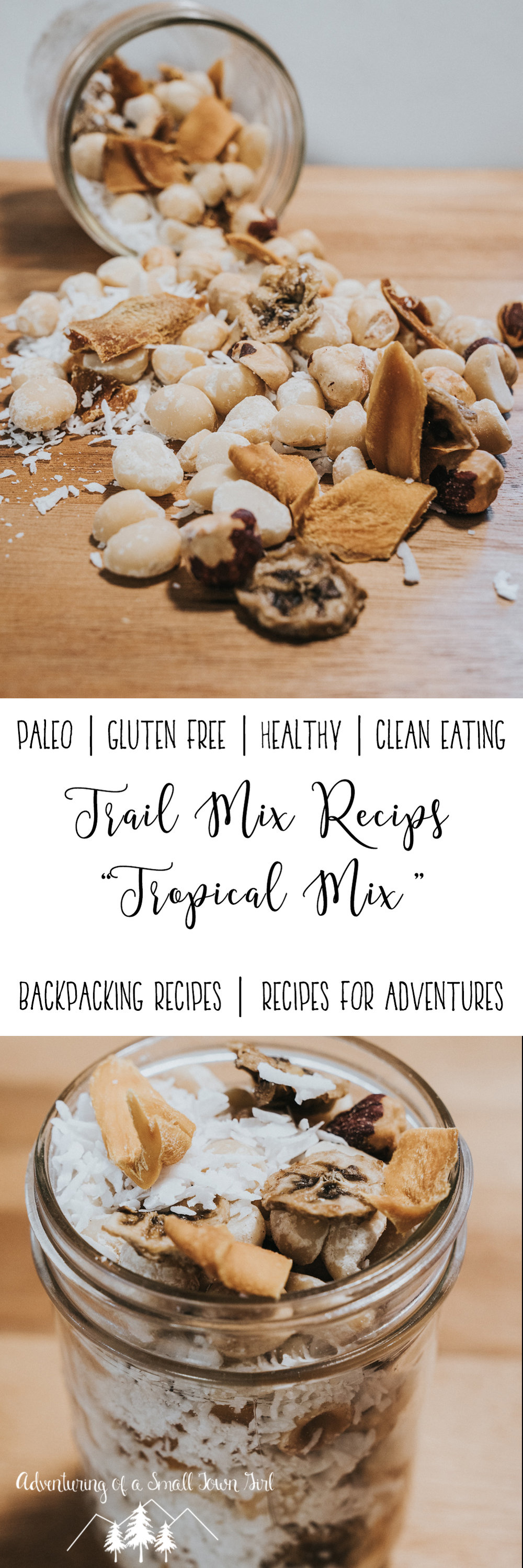 Homemade Trail Mix Recipe Tropical Trail Mix by Adventuring of a Small Town Girl (ASTG) - No Bake Raw Vegan Trail Mix - Make your own trail mix.jpg