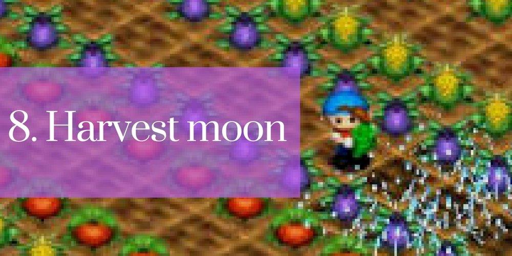 8 harvest moon.jpg