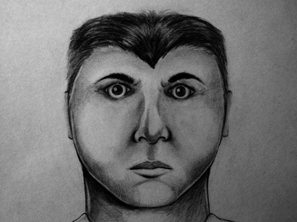 funny-and-bad-police-sketches-10.jpg