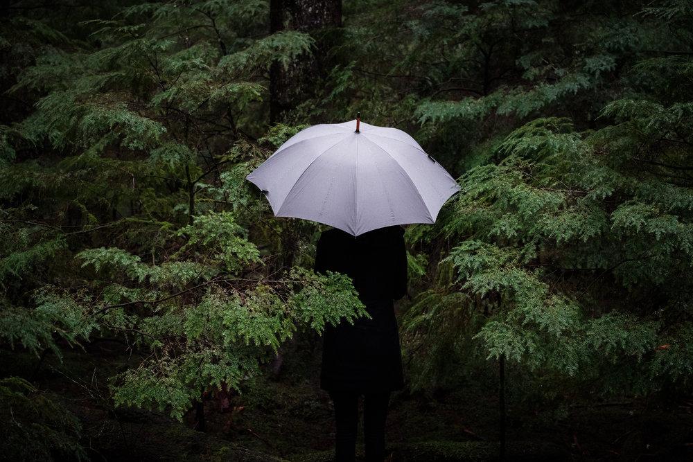 westerly-green-umbrella-in-woods.jpg