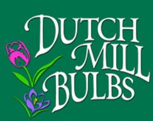 dutch mill logo.jpg