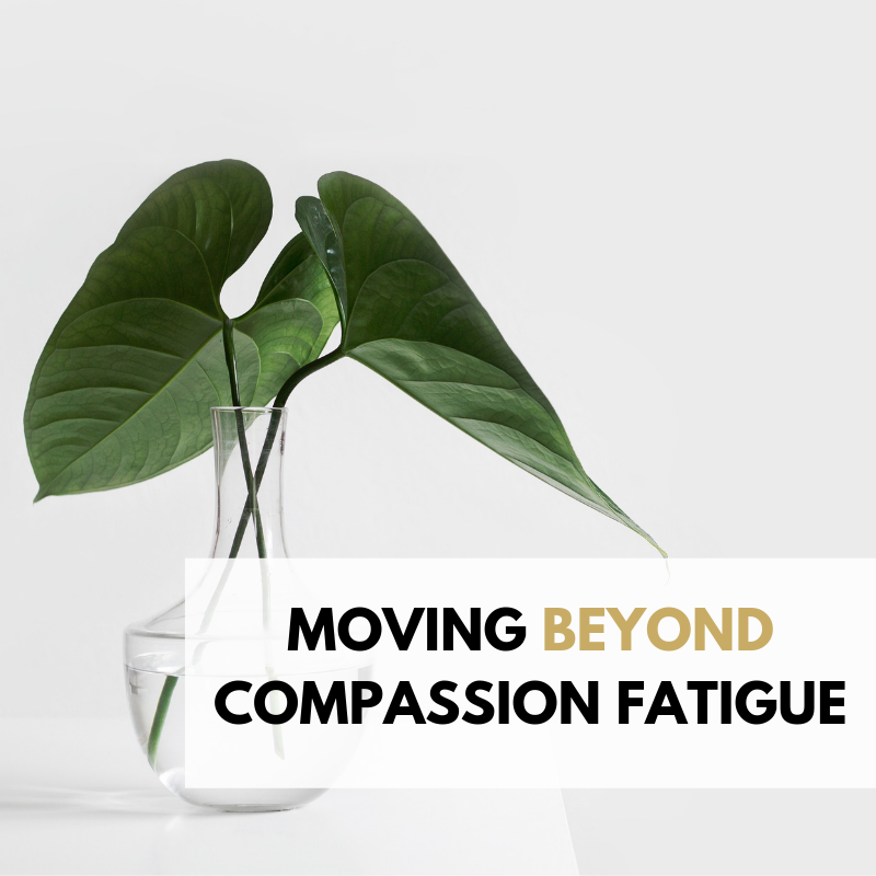 MOVING BEYOND COMPASSION FATIGUE.png