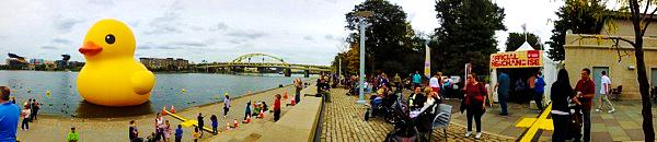 Pittsburgh Duck Pano