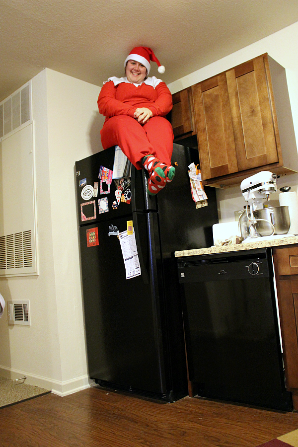 Ashlie Elf on the Shelf