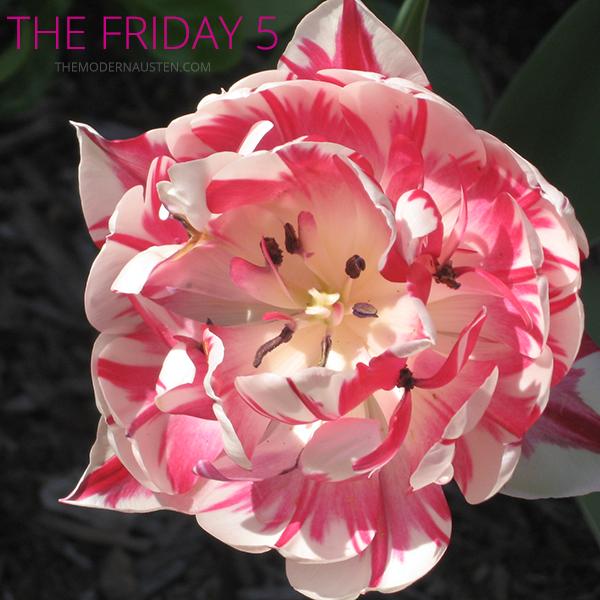 The-Friday-5-v-19