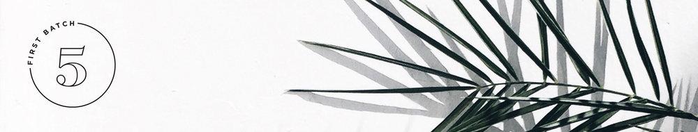 Logo on Banner 2.jpg