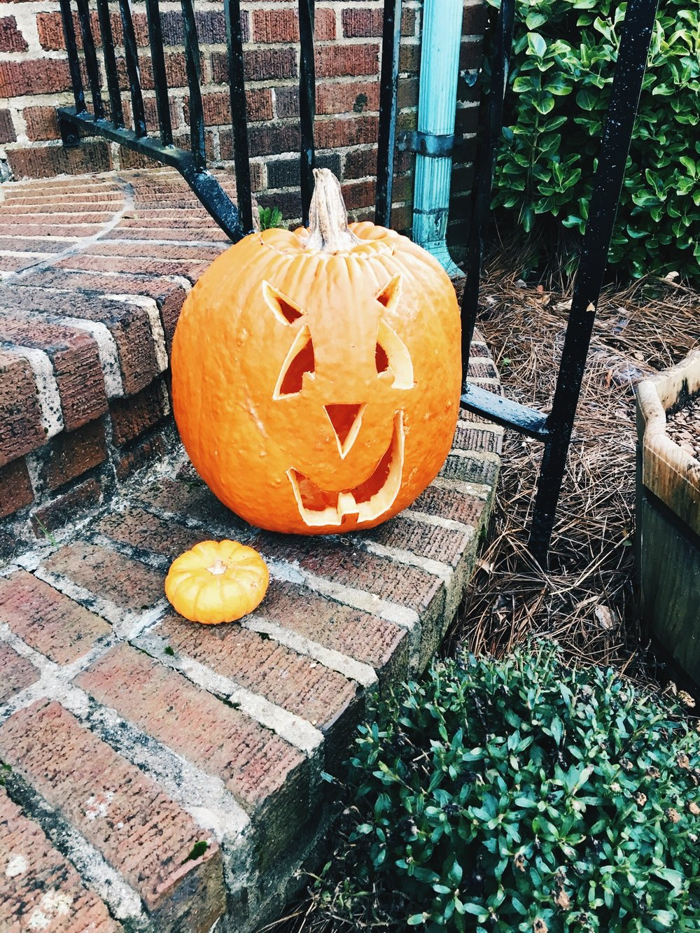 The man and I crudely carved this Jack-O-Lantern for our front stoop. There is nothing like pumpkins on your doorstep to put you in the fall mood. & Decorate With Me - 2017 Halloween Decor Takedown Haul. \u2014 Wildflower ...