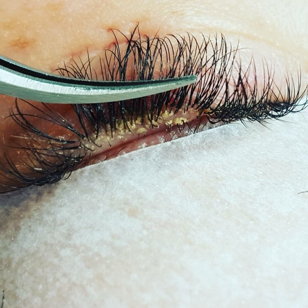 How To Clean Your Lash Extensions Makeup Artist Sunshine Coast