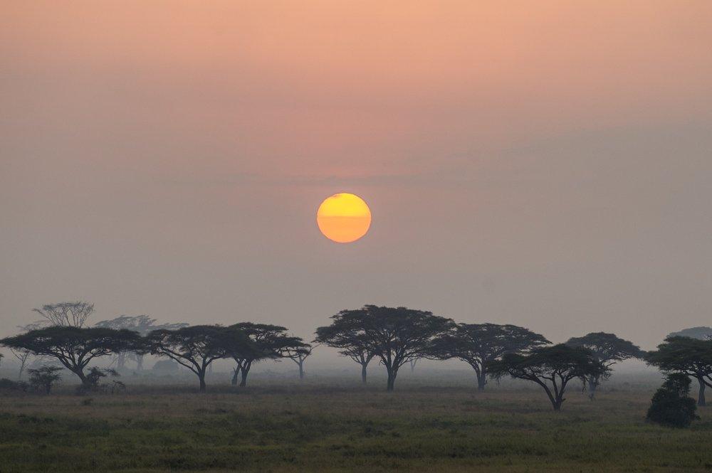 SerengetiBalloonSafaris-21.jpg