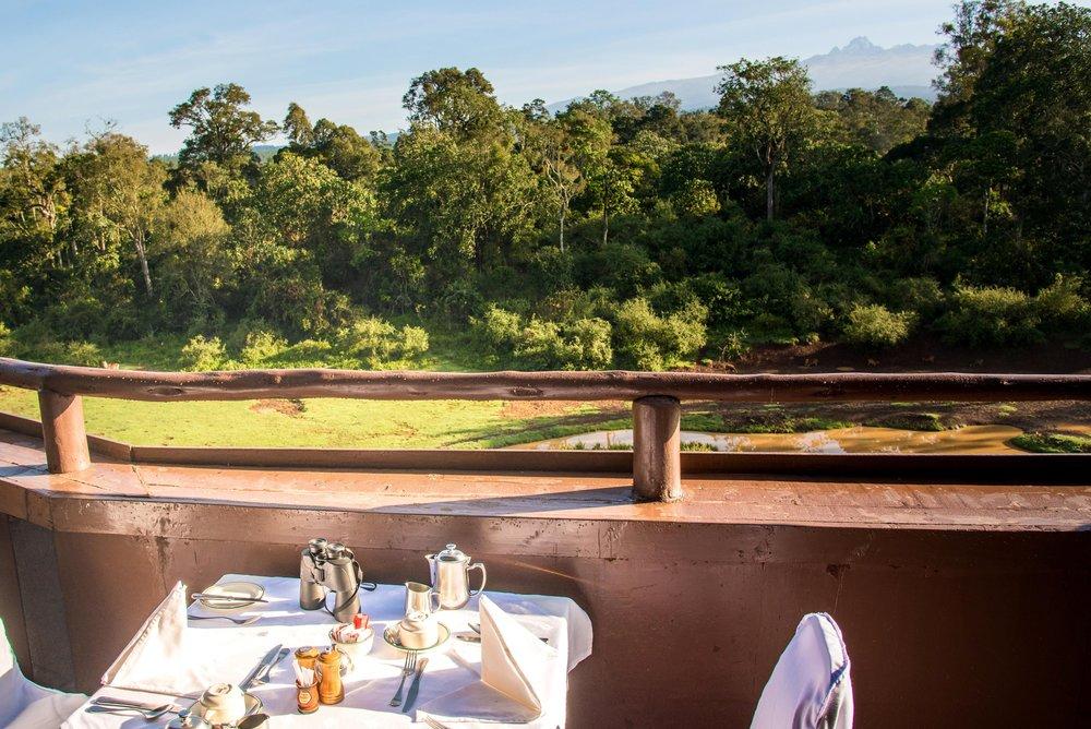 Rooftop Terrace Breakfast.jpg