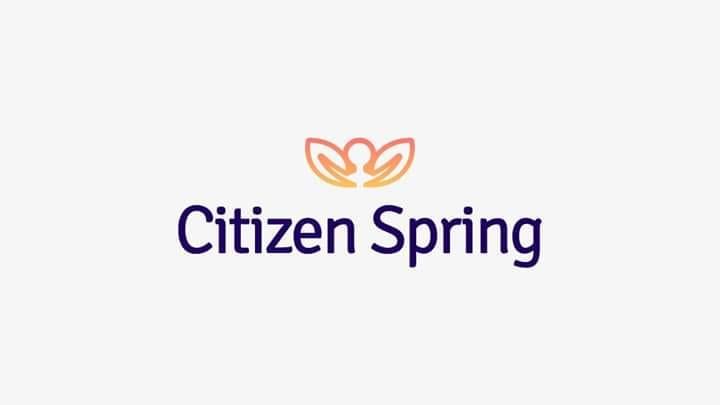 citizen spring.jpg