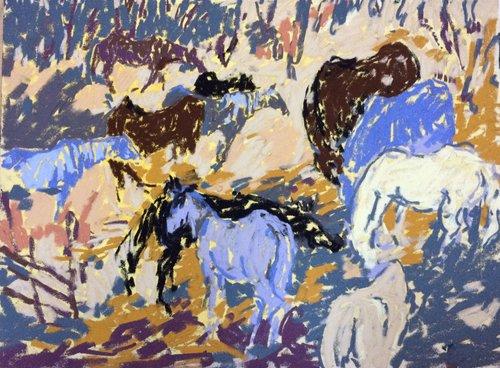 tyga-helme-horses-2.jpg
