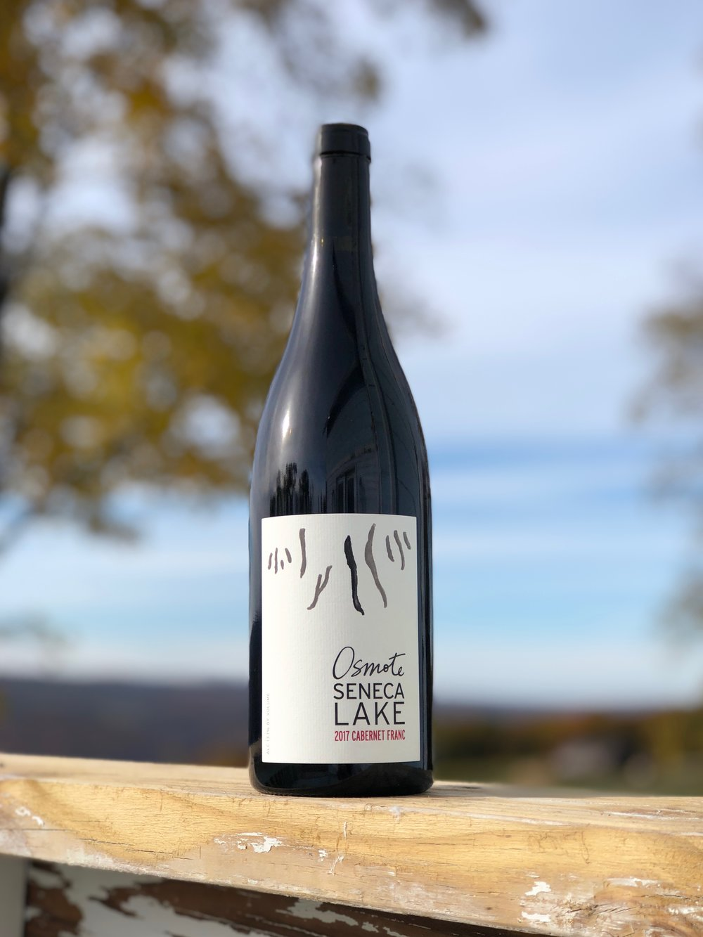 2017 seneca lake cabernet franc - Playful tannins on a sunny, autumn afternoon…