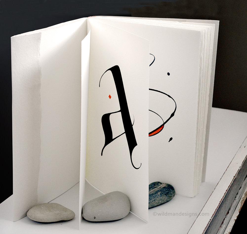 WildmanBook1.jpg