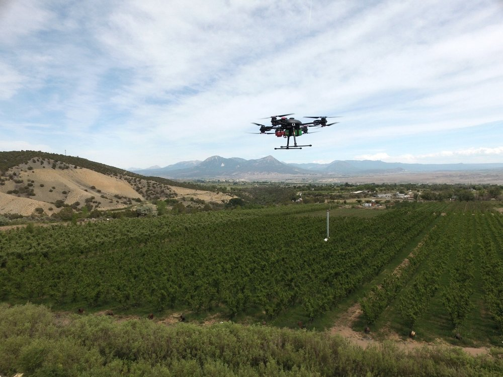 Orchard and vineyard health assessments, irrigation efficiency