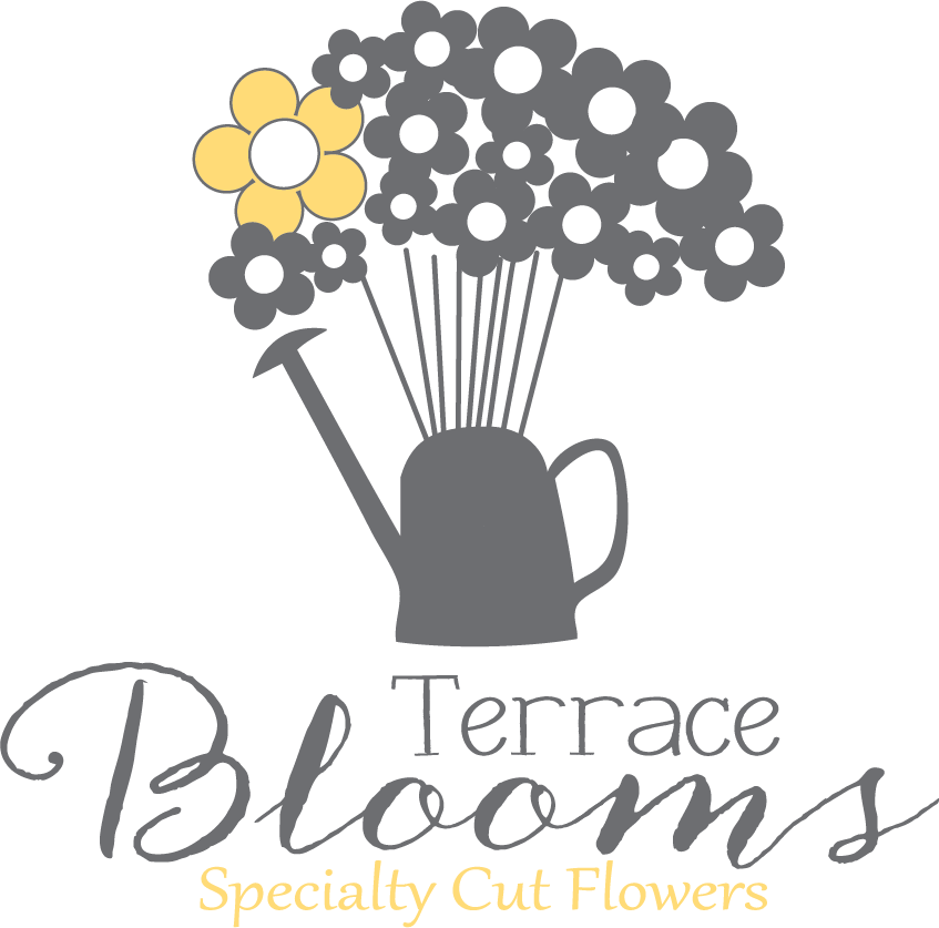 Terrace Blooms Specialty Cut Flowers