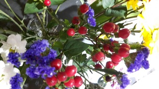 20160710_064634_resized.jpeg