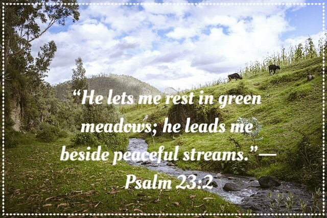 psalm23:2.jpg