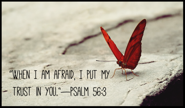 psalm56:3.png