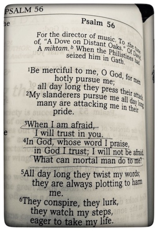 Psalm56:3.jpg