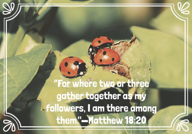 matthew18:20.png