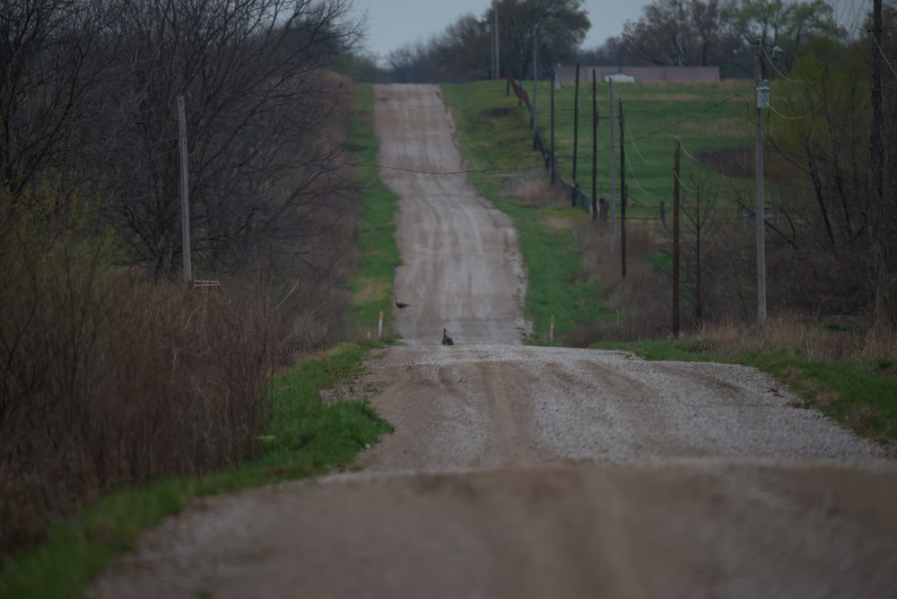 Miles and miles of dirt roads traveled.
