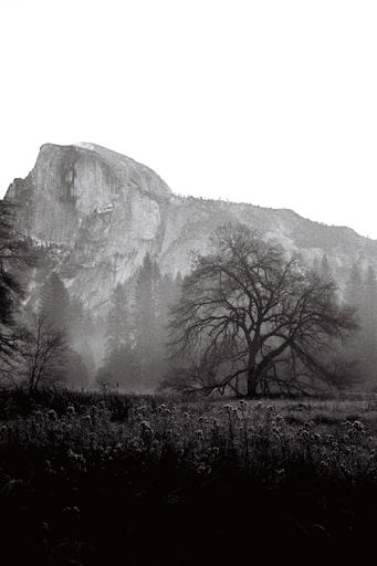 Yosemite Nov 2010.png