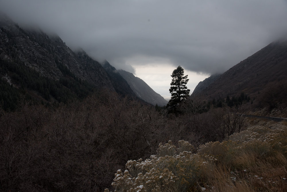 Little Cottonwood Canyon, November 2017