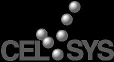 celsys logo.png