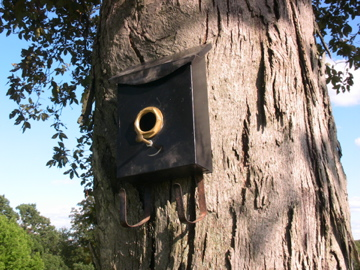 Birdhouses Made from Recycled Materials