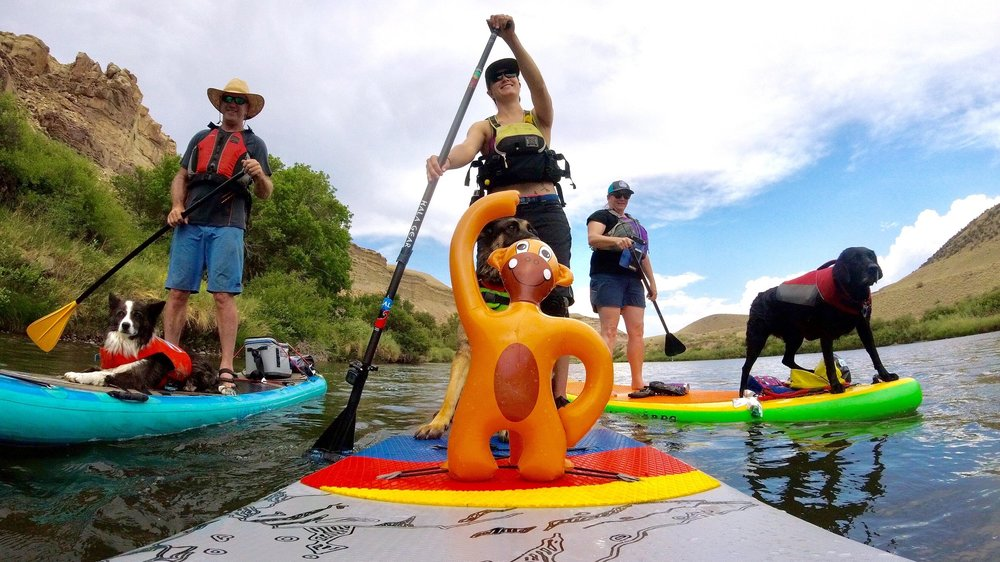 Stand up paddle board friend and their SUP dogs in Colorado's Western Slope on the Gunnison River near Delta.