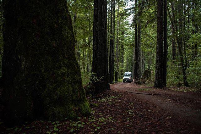I spy a Sprinter Van | @townsendvans