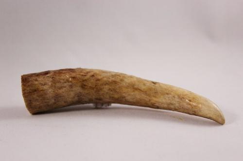 CBD Elk Antler chew