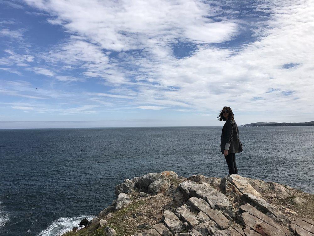 cape bonavista puffin lighthouse