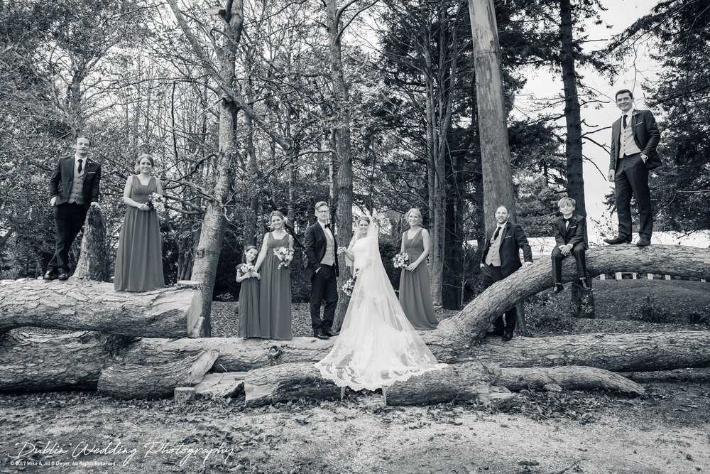 Tinakilly House Wedding Photographer: Bride & Groom and Groomsmen and Bridesmaids and Flowergirl and page Boy